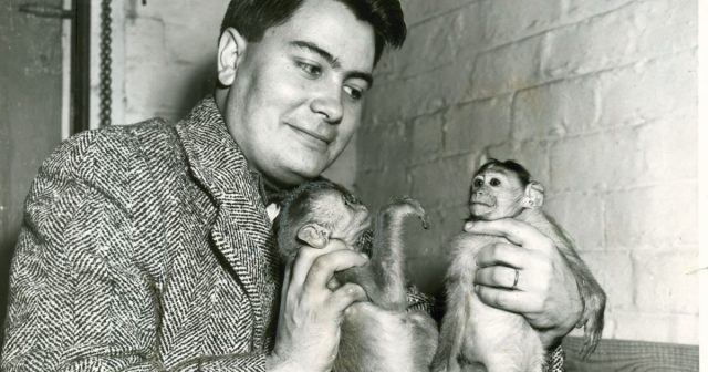 jim jones sells monkeys