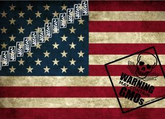 monsanto politics american flag